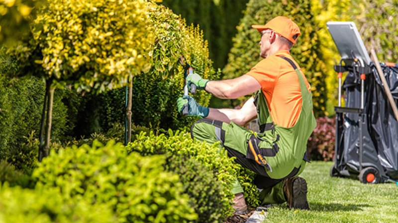 The Importance Of Business Insurance For Landscapers